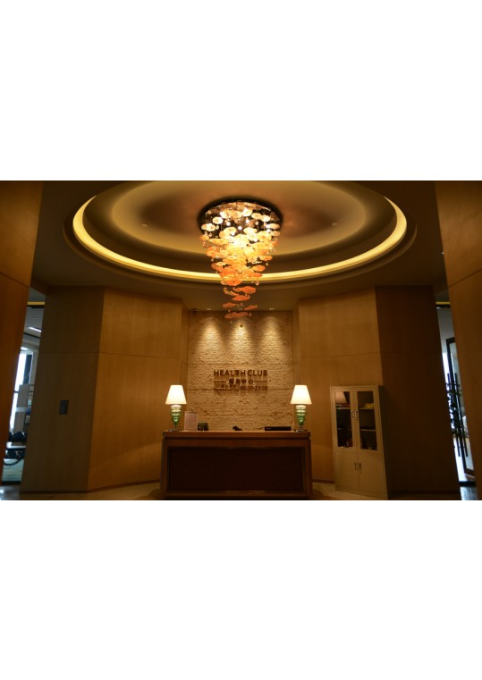 Wangda hotel project lighting made from china lighting manufacturer coart